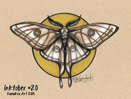 Inktober #20 2015 - The Spanish Luna Moth by Kamakru