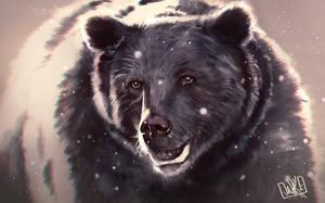 Bear Sketch by JakkeV