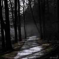Moonlight Drive by tvurk