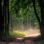 Dusty Road by tvurk
