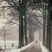 January Hues by tvurk