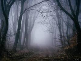 Deep Solitude by tvurk