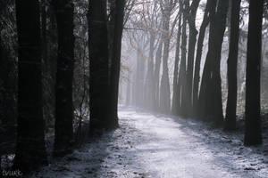 Mythic Winter by tvurk
