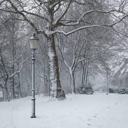 Milky White Winter by tvurk