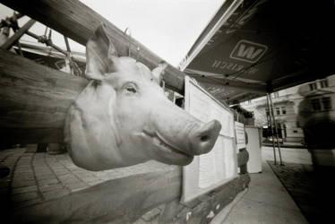 Pighead by BoiledFrog
