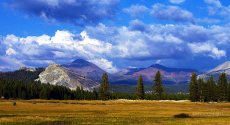 Tuolumne Meadows by sintar