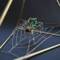 Spider No 81 and Web (close) by AMechanicalMind