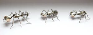 Watch Parts Ants Marching by AMechanicalMind