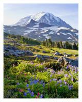 Simple Pleasures by hikester