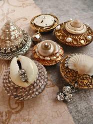 Seashell fridge magnets by janedean