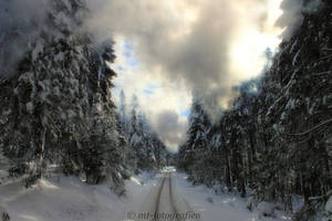 winter wonderland in the resin 8 by MT-Photografien