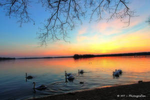 Swanlake romantic 2 by MT-Photografien