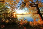evening autumn colors at Tegeler lake 2 by MT-Photografien