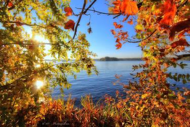 beautiful autumn colors 2 by MT-Photografien
