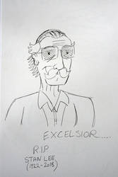 Excelsior... (R.I.P Stan Lee) by LewisDaviesPictures