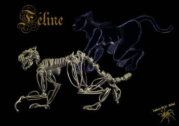 Feline by Belial28