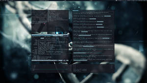 Arch Linux and Awesome 3.5 (May 2013) by f-s0ciety