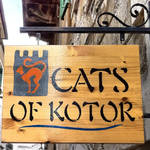 Cats of Kotor-1 by ArtBIT