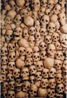 Skulls by AllenNecchi