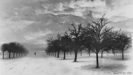 Winter in the park.. by Nela23235