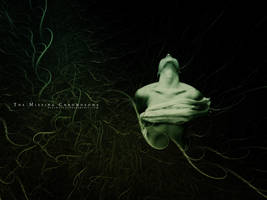 The Missing Chromosome by blackseed