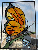 Butterfly by ioglass