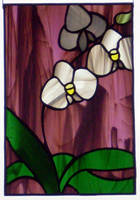 Orchids 2 by ioglass