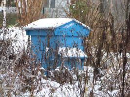 Une ruche en hiver. by Mergorti