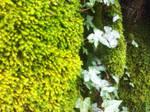 lushy greenyness5 by braindeadmystuff