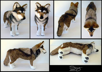 Mexican Wolf by SarityCreations