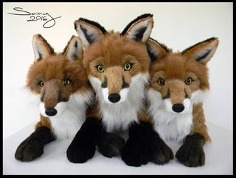25 inch Red Foxes #1-3 by SarityCreations