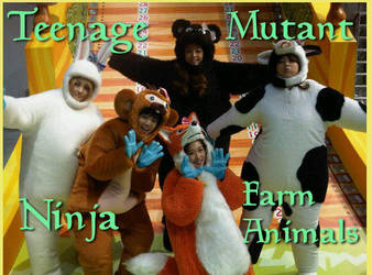 Teenage Mutant Ninja KARA by dartfu