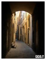 Firenze I by Cicia