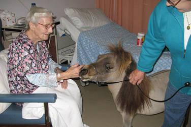 Mum in Hospital by AdamsWife