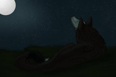 Beneath the Stars by Drake-Vega