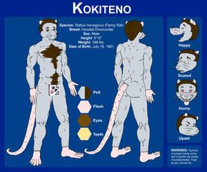 New Fursona Ref Sheet by kokiteno