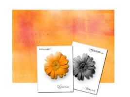 Orange Flowers by paperfairys