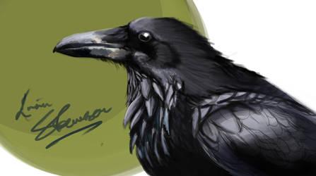 Raven practice by UniComicRN