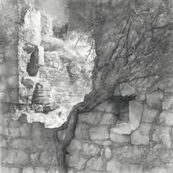 Walls by DChernov
