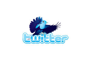 Twitter Logo by WinfrithGraphics