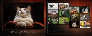 Whiskers - Calendar 2019 by ZoranPhoto