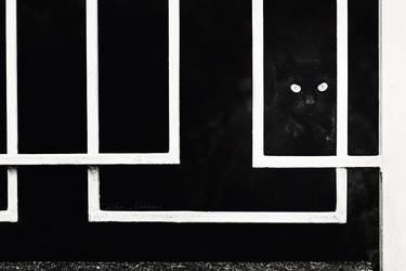 Gatekeeper by ZoranPhoto