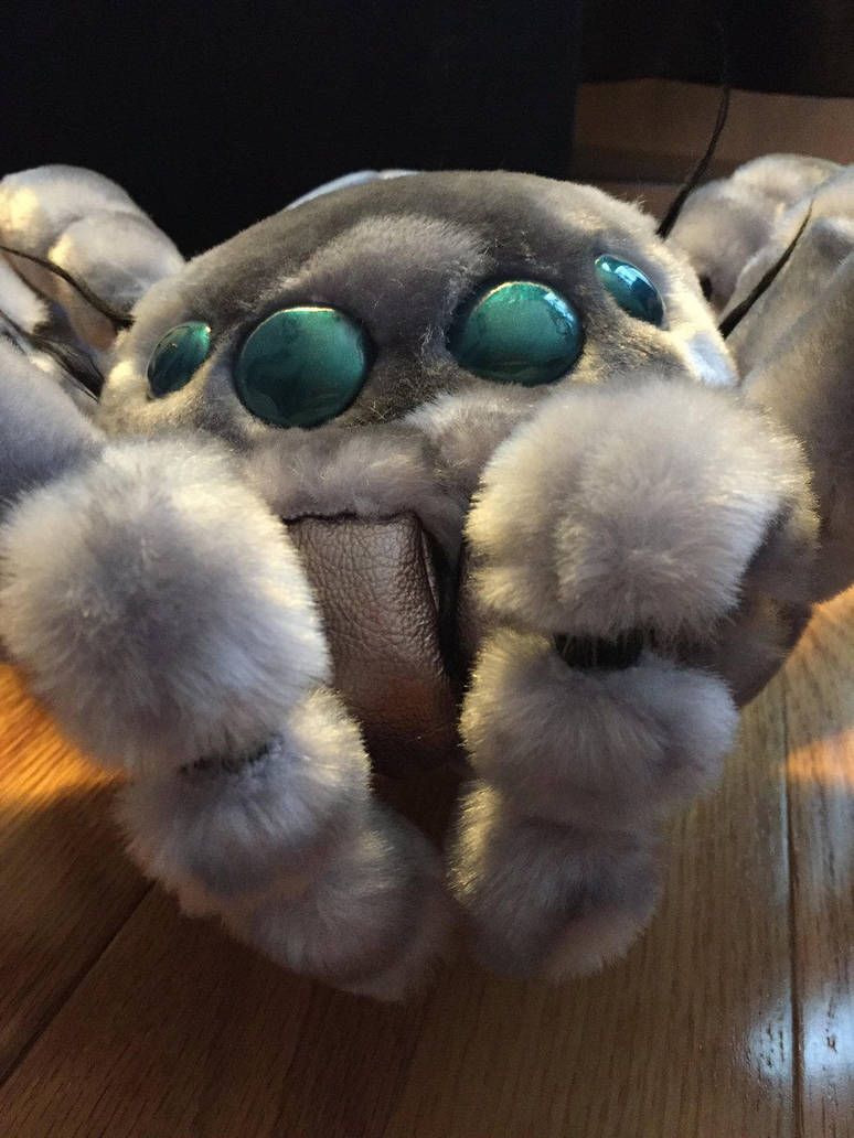Too Cute Arctic Giant Jumping Spider By Thekimeleon On Deviantart