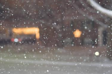 Snowfall 1 by Celebrith