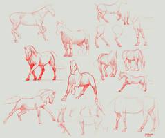 Anatomy practice by yakonusuke