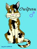 Owlpaw by MintFireTheCat