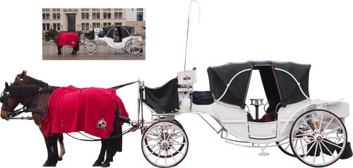 white horse carriage png by Nexu4