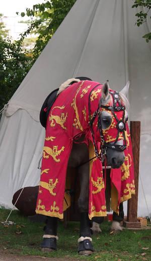Knight's horse .. waiting by Nexu4