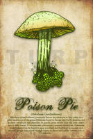 Poison Pie by turp