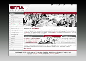 STRA consulting by pinselstrich